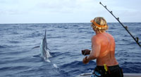 A British tourist catching a Marlin
