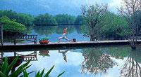 Yoga on Koh Chang island