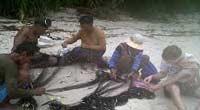 Fishing in Fuga