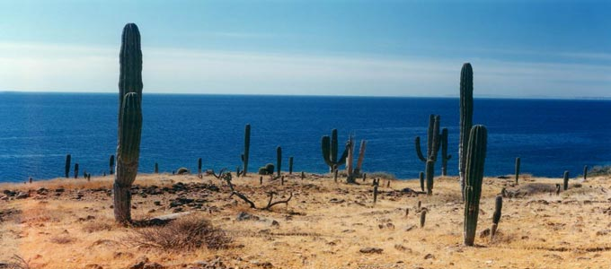 The Mexican Island of Isla Cerralvo which sits off the Baja Peninsula coastline.